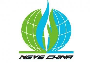 NGVS CHINA